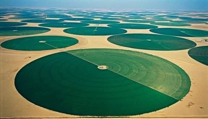 أكثر من 50 مليون فدان من الأراضي الزراعية